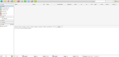 ruTorrent Interface